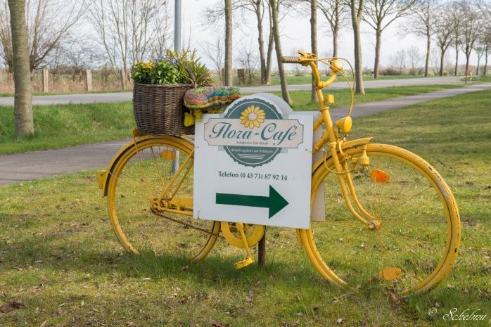 fahrrad-fehmarn-gelb-ostsee