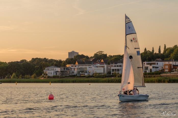 Segler segeln Phönixsee Dortmund See