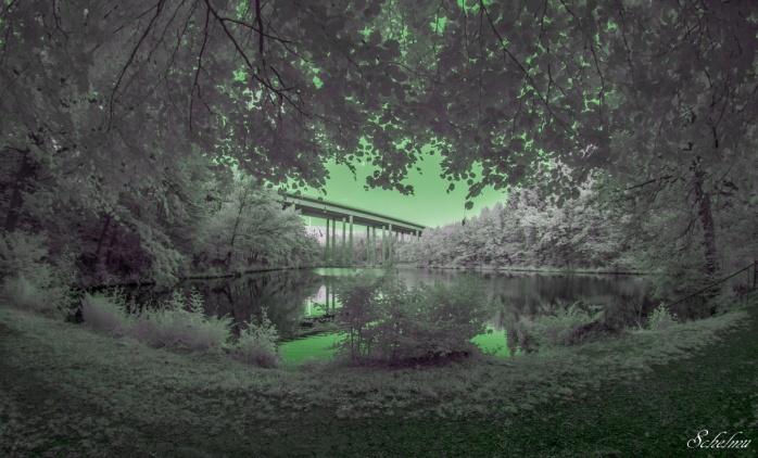 landeskroner-weiher-wilnsdorf-siegerland-wood-effekt-ir-infrarot-grun