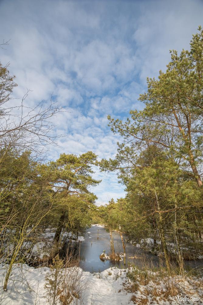 pietzmoor winter lüneburger heide 8