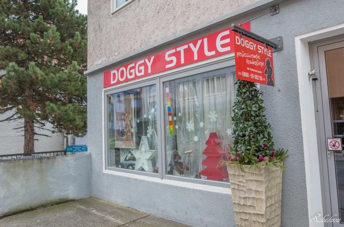 salzburg doggy style