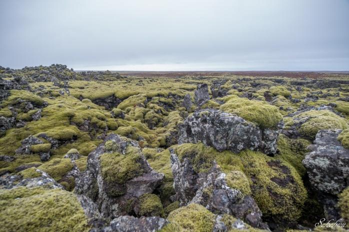 island vulkangestein landschaft