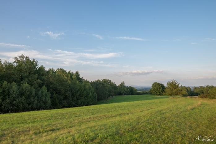 trupbacher heide siegen wiese